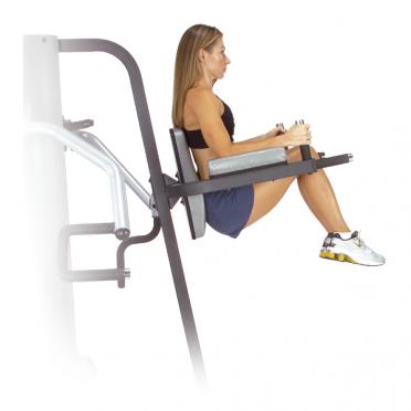 Body Solid Vertical Knee Raise and Dip Station für der Two stack multigym